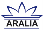 Aralia Systems Ltd - Intelligent Surveillance Solutions for Airports