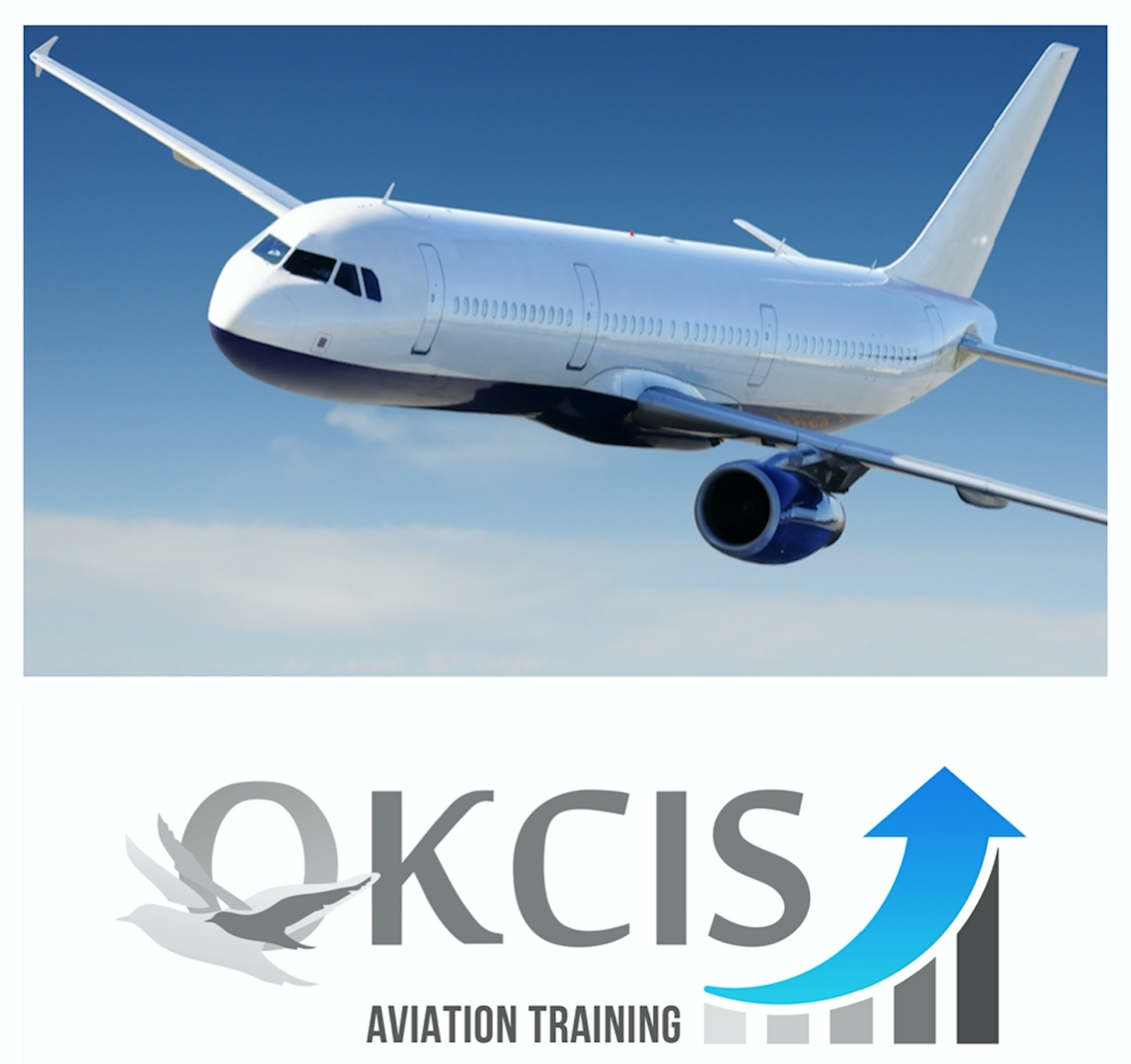 Effective Aviation Marketing & Non-Aeronautical Revenues Training