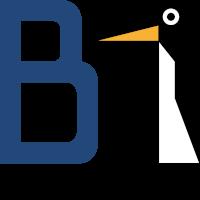 B1 Systems GmbH