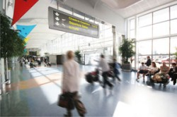 Airport Baggage Handling Specialists